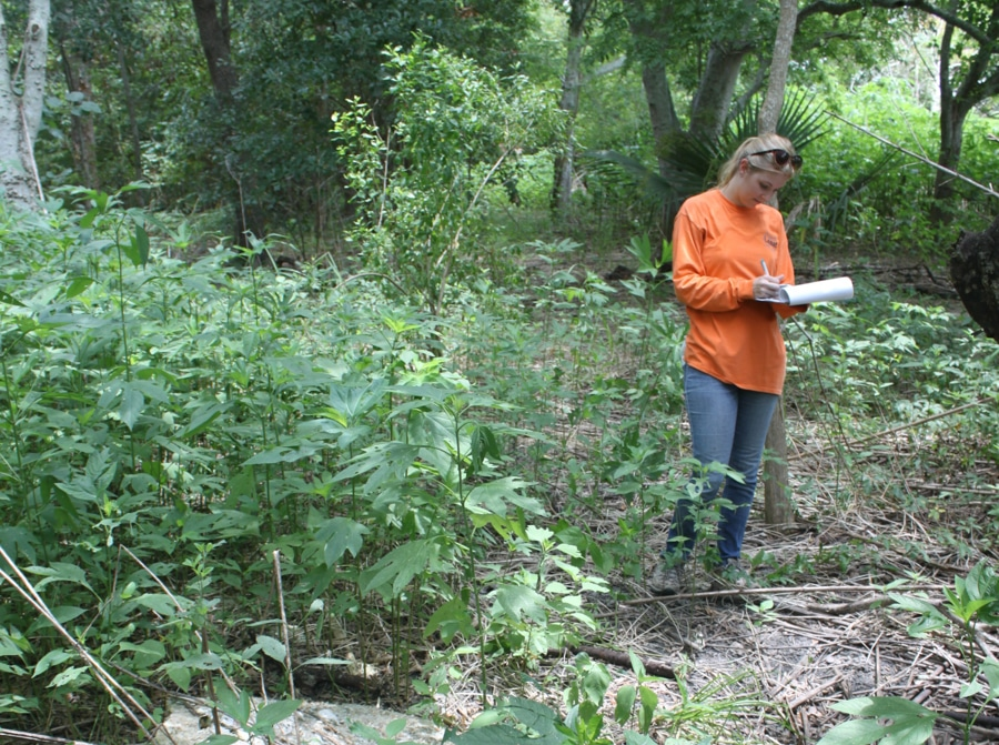 Kelly Caris - Phase I ESA Forest Site Walk