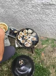 Oysters Endymion